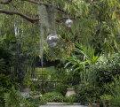 Inside an inner-city garden in Sydney's Redfern.