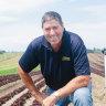 AusVeg chairman and leafy green grower Bill Bulmer on his east Gippsland property.