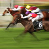 Day prepared to do the work for Outback Diva victory