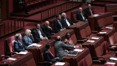 Senators including Concetta Fierravanti-Wells and Eric Abetz voting against marriage equality in November 2017.