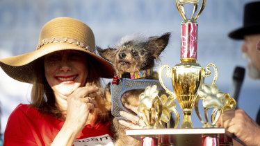 Owner Darlene Wright with Scamp the Tramp and his World's Ugliest Dog trophy.