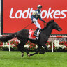 Ladbrokes owner increases bid to $3.5b for Tabcorp's wagering business
