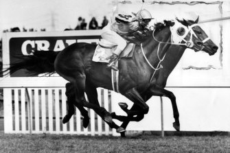 Hyperno takes the 1979 Melbourne Cup, seemingly unburdened by a large wager from Rupert Murdoch.