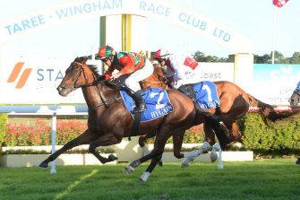 Racing returns to Taree today with a seven-race card.