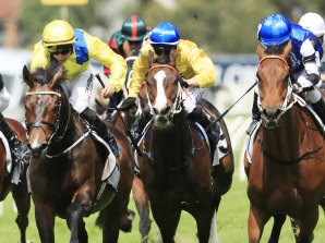 Young Rascal holds off Mugatoo in last year's Manion Cup on a soft track