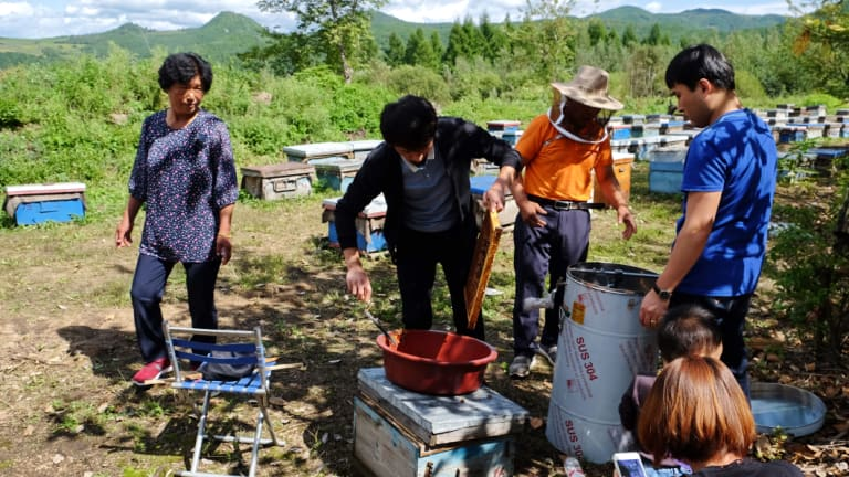 Li Jing'ai (left), 64, looks over while her husband and two sons are working on the honey farm.