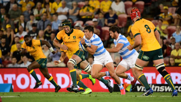 The Wallabies resume hostilities with Argentina at Bankwest Stadium on Saturday, mere miles from where the storied Indigenous warrior Pemulwuy met his demise.