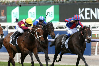 Prince Of Arran winning last year's Hotham Handicap.