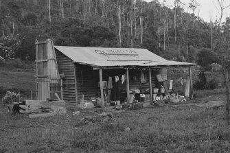 The original big hut at Amazon Acres.