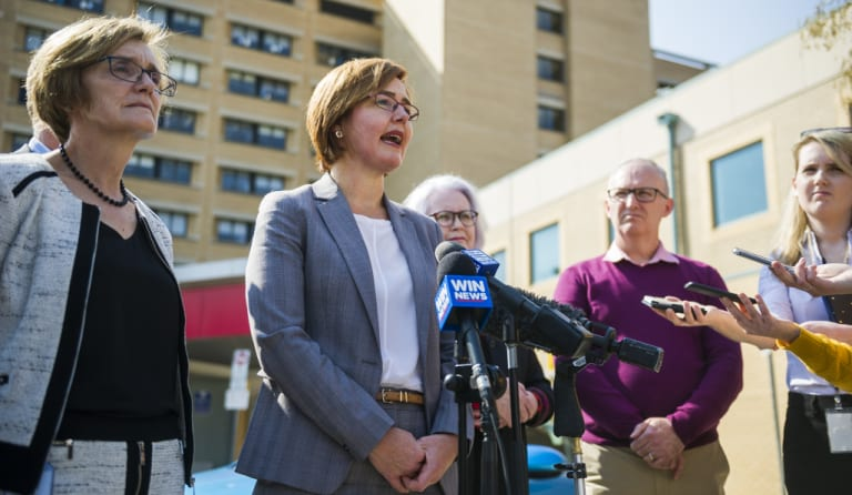 Health Minister Meegan Fitzharris announced the independent review on Monday.