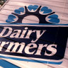Dairy Farmers is one of the key dairy brands in the Lion Dairy and Drinks portfolio.