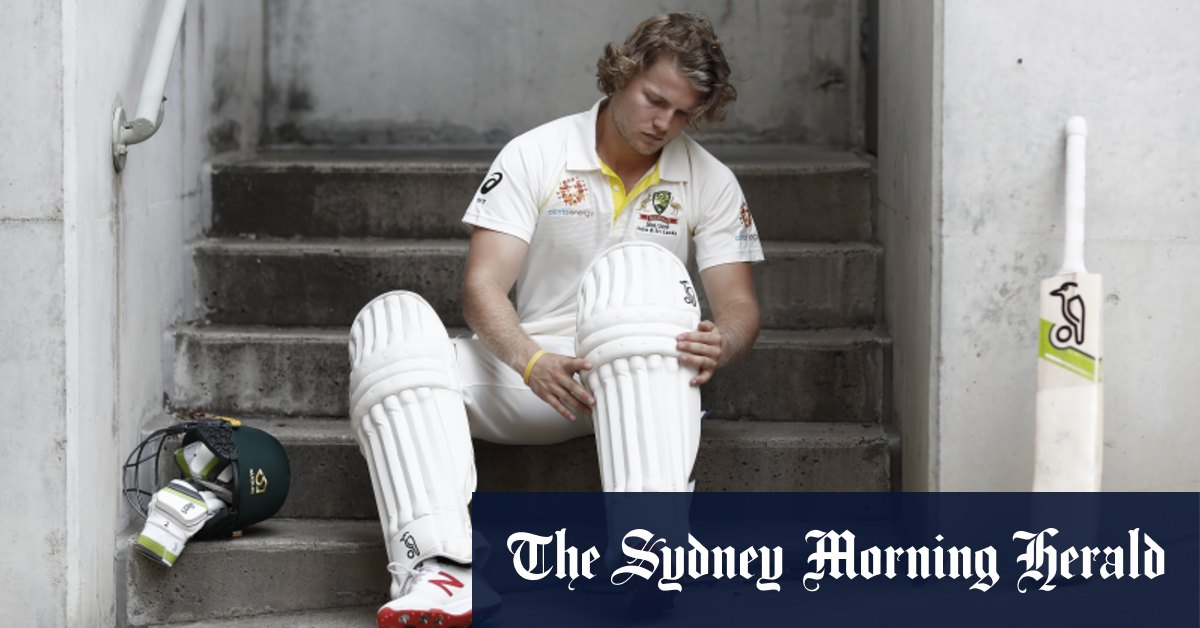 'Could be the making of him': Pucovski backed to replace hurt Warner – Sydney Morning Herald
