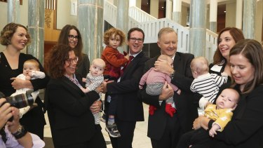 Opposition Leader Anthony Albanese with Labor MPs Alicia Payne, Amanda Rishworth, Matt Keogh, Anika Wells and Kate Thwaites and their new babies.