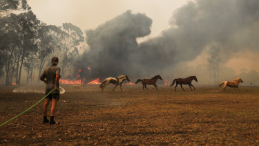 Orangeville residents defend their property as bushfire approaches their township on Friday.