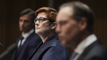 Minister for Foreign Affairs Marise Payne said the review will enable the international community to better prevent the next pandemic.