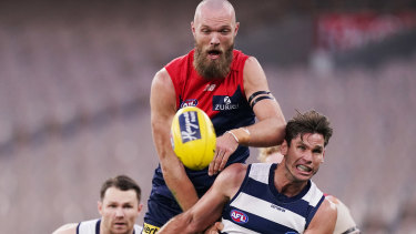 Up and over: Melbourne big man Max Gawn climbs high over Geelong's Tom Hawkins.