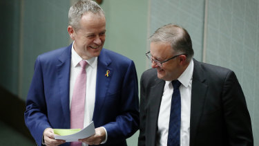 Opposition Leader Bill Shorten and Anthony Albanese  during question time.