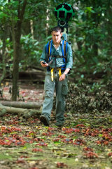 Dr Grigg capturing the crab migration in the rainforest.