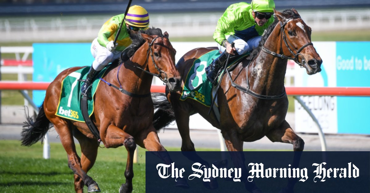 Denis Pagan to pull pin on Cup dream as Tralee Rose wins Geelong Cup