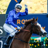 Horses, trainers, jockeys, tipsters: Queens of the turf rule in new world