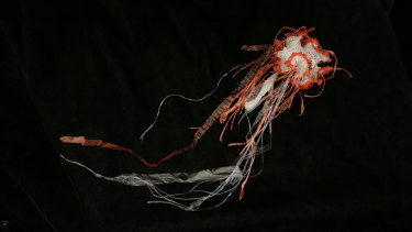 Plastic-bag jellyfish by Margaret Wertheim.