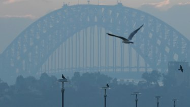 Thick smoke covers Sydney on Monday morning.