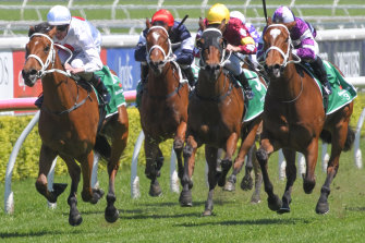 Starla, right, chases home Willowheart on the Kensington track in one of six minor placings.