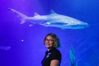 Di Brandl, pictured with resident grey nurse shark Mitchell, still loves working at Sea Life Melbourne Aquarium.