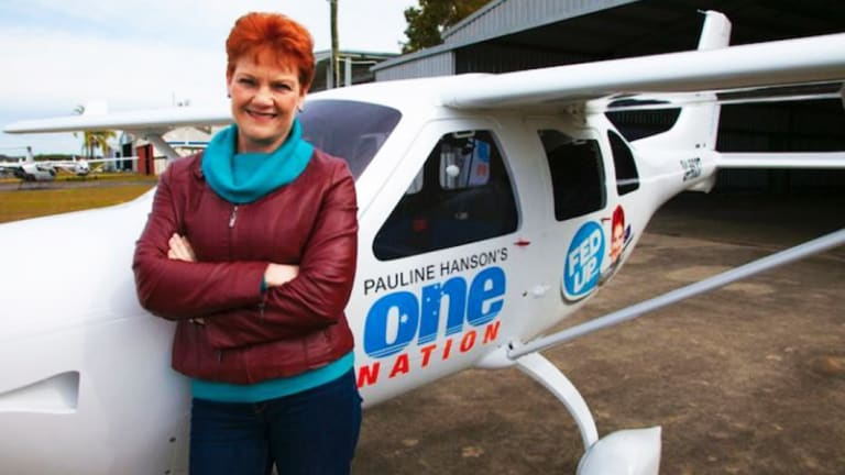 """Pauline Hanson's One Nation party was accused of buying a private plane with funds from a high-rise Victorian property developer to """"ferry"""" their leader around, without officially declaring it as a gift."""