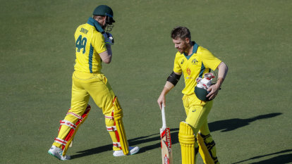 Botham says brace for abuse, but Ali urges fans to give Smith, Warner fair go