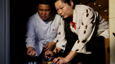 Staff members at the world's largest cockroach farm, the Good Doctor Pharmaceutical Group in Xichang City, China.