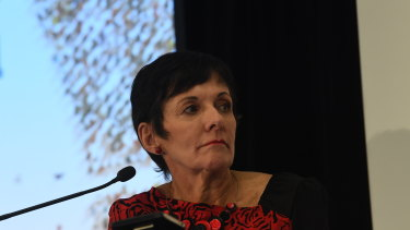Small Business Ombudsman Kate Carnell is concerned about the implications of Single Touch Payroll for small businesses.