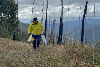 A shovel is found at the search site in Mt Hotham.