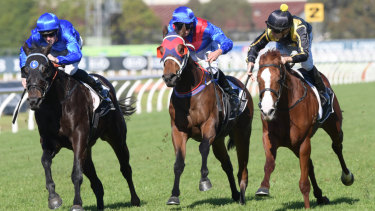 Storming down the outside:  Nicci's Gold fires home to win at Rosehill last year.