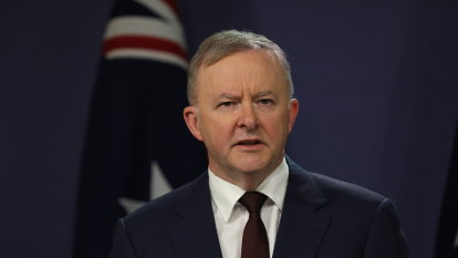 Albanese rebuffed: Supreme Court judge blocks Labor preselections amid infighting
