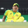 As it happened: David Warner injures groin, another Steve Smith ton inspires Australia to series victory