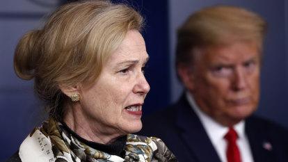 'Graphs I never made': Trump's virus adviser says misinformation and denial rife