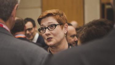 Foreign Minister Marise Payne distanced Australia from Dr Skinner's assessment.
