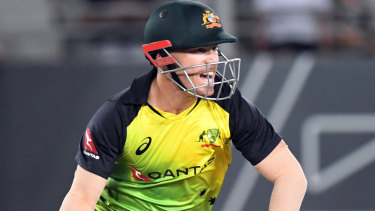 David Warner has been a successful stand-in captain.