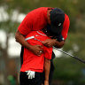 'It was unbelievable': Tiger brings his cub to the course