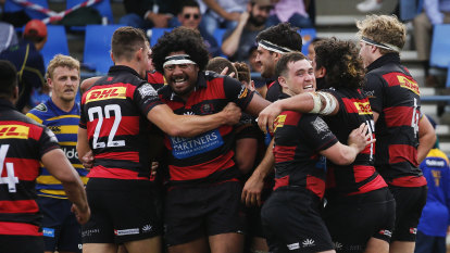 Norths knock off Sydney University as Gordon end Randwick's season in Shute Shield thriller