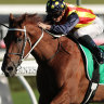 Punters rally to make Nature Strip Everest favourite