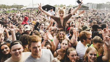 Last year's Groovin the Moo in Canberra was the first music festival in Australia where legal pill-testing was conducted.