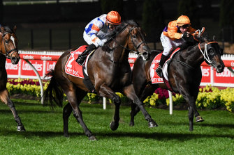 Hey Doc won the Manikato in the spring. This autumn he's being targeted at the William Reid.