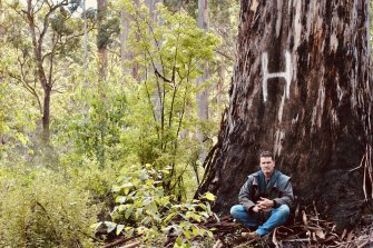 Jeff Pow in an area of Lewin Forest after a successful 2018 action to have it taken off logging plans along with the other remaining two-tiered karri forests in the South West.