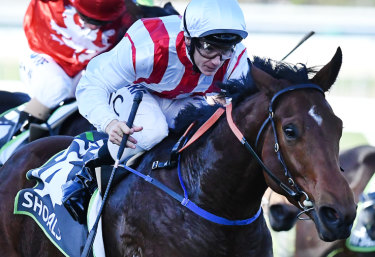 Soft-track specialist: Shoals and Tim Clark take out the Robert Sangster Stakes earlier in the year.