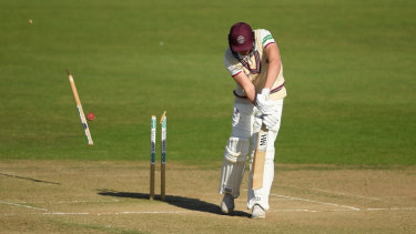 Somerset's Josh Davey is bowled by Abbott during Hampshire's big win.