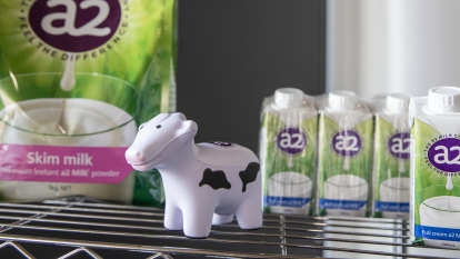 'Too big to ignore': A2 Milk commits to China despite plunging profits