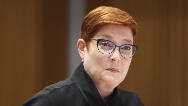 Offered to help: Foreign Minister Marise Payne.
