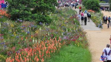 Horticulturalist James Hitchmough's landscape design at the London 2012 Olympic Park.